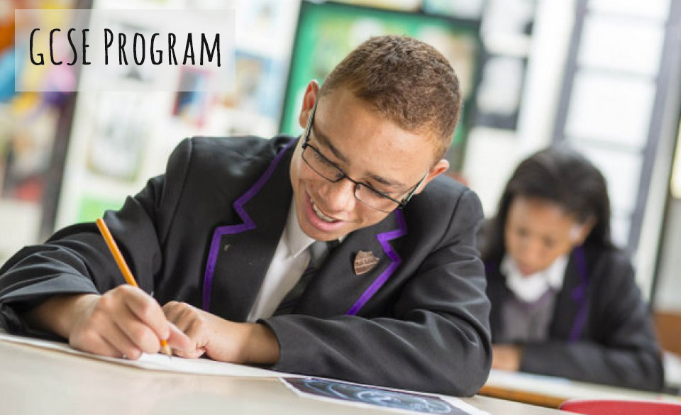 دوره جی سی اس ای چیست ؟ ( GCSE Program )